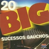20 Big Sucessos Gaúchos by Various Artists