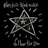 Follow the Star by Electric Bird Noise