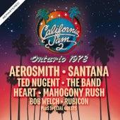 California Jam 2 - Ontario 1978 - Remastered von Various Artists