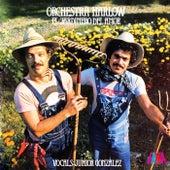 El Jardinero Del Amor by Various Artists