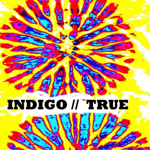 True by Indigo
