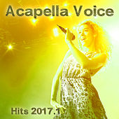 Acapella Voice Hits 2017.1 by Various Artists