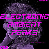 Electronic Ambient Peaks by Various Artists