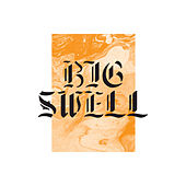 Big Swell, Vol. 2 by Various Artists