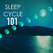 Sleep Cycle 101 - Pure Relaxation Moods, Deep Sleeping Healing Songs, Eternal Bliss by Sleep Cycle