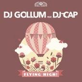 Flying High! by DJ Gollum