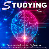 Studying Music: Relaxing and Calm Music for Studying, Deep Focus, Concentration and Reading by Einstein Study Music Experience