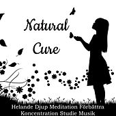 Natural Cure - Helande Djup Meditation Förbättra Koncentration Studie Musik med Natur New Age Instrumental Ljud by Sleep Music System