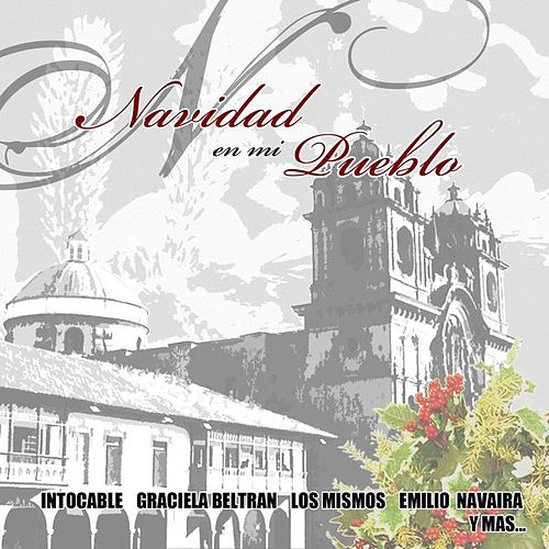 Play & Download Navidad En Mi Pueblo by Various Artists | Napster