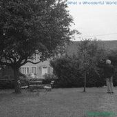 What a Wonderful World (Accordion Solo) by Takashi Kamide