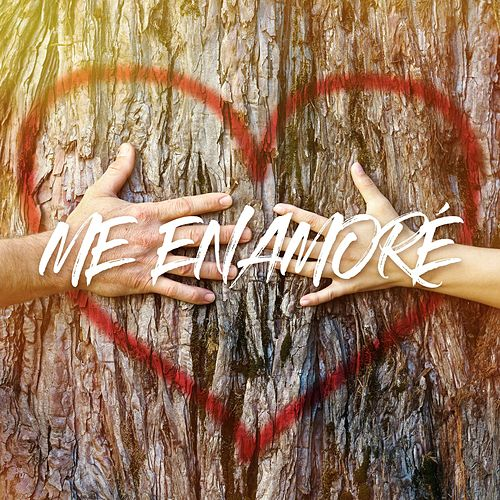 Me Enamoré by The Harmony Group