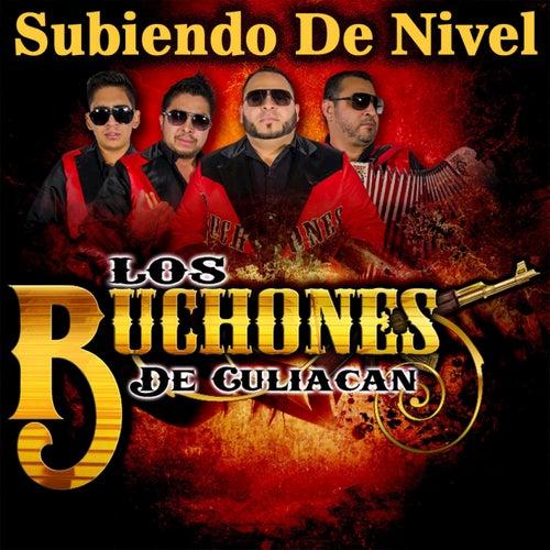 Subiendo de Nivel by Los Buchones de Culiacan