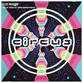 Pull the Trigger by Flux Pavilion