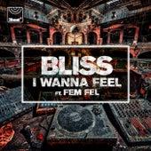 I Wanna Feel by Bliss
