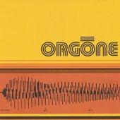 Orgone by Orgone
