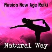 Natural Way - Música New Age Reiki para Cuerpo Saludable Ejercicio Intelectual Solución de Problemas con Sonidos de la Naturaleza Instrumentales by Various Artists