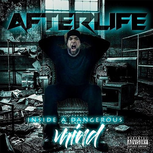 Inside a Dangerous Mind by Afterlife
