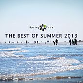 The Best of Summer 2013 by Various Artists
