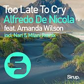 Too Late to Cry by Alfredo De Nicola