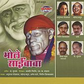 Bhole Saibaba by Various Artists