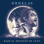 Bajo el Hechizo de Luna by Raúl Ornelas