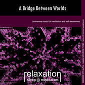 A Bridge Between Worlds by Relaxation Sleep Meditation
