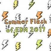 Summer Flash of EDM 2017 by Various Artists
