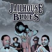 Introducing Jailhouse Blues von Various Artists