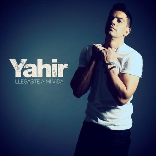 Llegaste A Mi Vida by Yahir