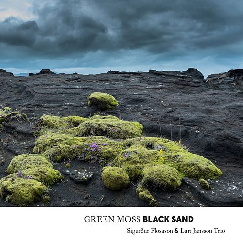Green Moss Black Sand by Lars Jansson Trio