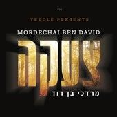 Tzaakah by Mordechai Ben David