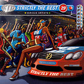 Strictly The Best Vol. 29 by Various Artists