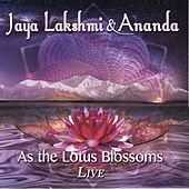 As the Lotus Blossoms by Various Artists