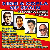Sing & Copla of Spain - 14 Flameco Singers by Various Artists