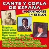 Cante y Copla de España - 14 Cantaores, 14 Estilos by Various Artists