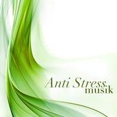 Anti Stress Musik - Meeresrauschen und Vogelgezwitscher zur Entspannung und Wohlfühlung zum Stress und Angst Abbauen by Meister der Entspannung und Meditation