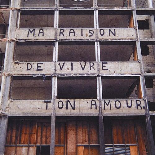 Ma Raison De Vivre Ton Amour by Dish
