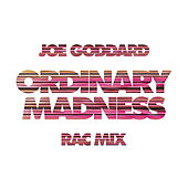 Ordinary Madness (RAC Mix) by Joe Goddard