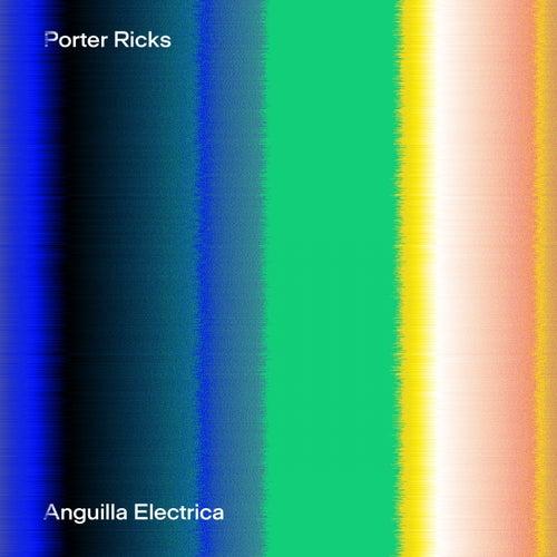 Anguilla Electrica by Porter Ricks