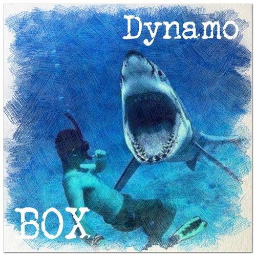 Dynamo by Box