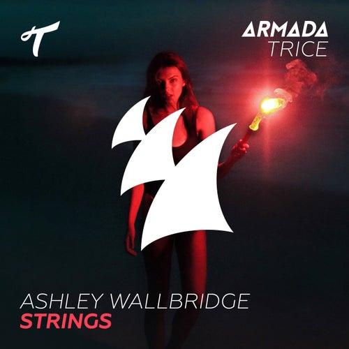 Strings by Ashley Wallbridge