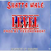 Level by Shatta Wale