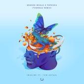 Imagine (Thoreau Remix) [feat. Tom Aspaul] by Bronze Whale