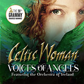 My Heart Will Go On by Celtic Woman