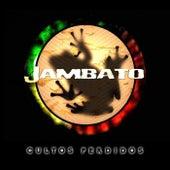Cultos Perdidos by Jambato