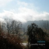 Possibly Imagine by Indiana