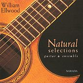Play & Download Natural Selections by William Ellwood | Napster