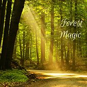 Forest Magic by Nature Sounds