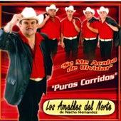 Puros Corridos by Los Amables Del Norte