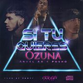 Si Tu Quiere (feat. Pusho) by Anuel Aa